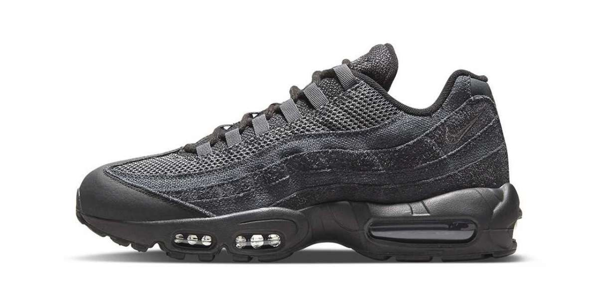 Where to buy Nike Air Max 95 Black/Iron Grey-Off Noir-Dark Smoke Grey DM2816-001 ?